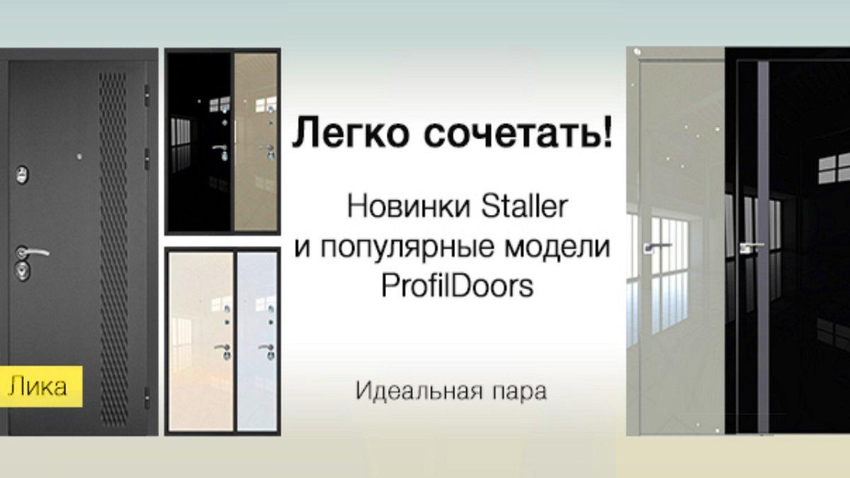 """Входные двери """"Staller"""""""
